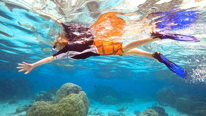 Scuba Diving Coral Reef Tumblr